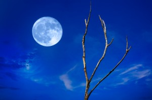 Once in a Blue Moon - American Idiom - Common English Sayings